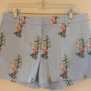 Ann Taylor petite Devin Fit shorts 10P